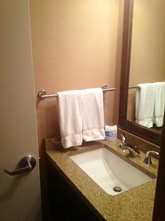 Ramada Seekonk Providence Area: Bathroom sink