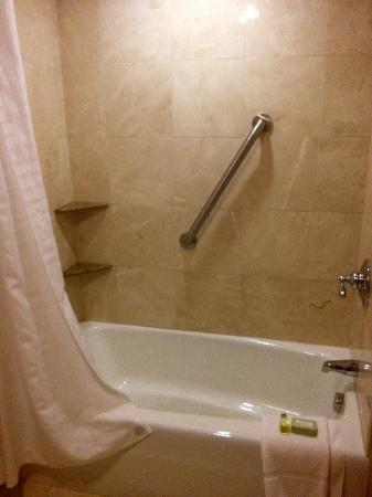 Ramada Seekonk Providence Area: Shower