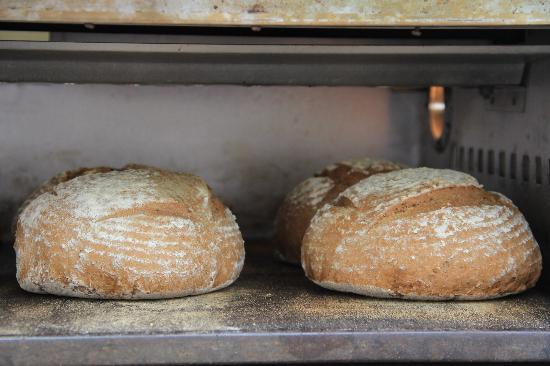 Boquete Artisan Baking Seminars: More Bread