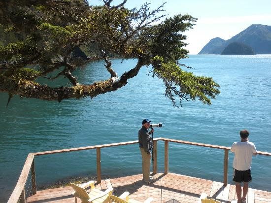 View from observation deck of Orca Island Cabins