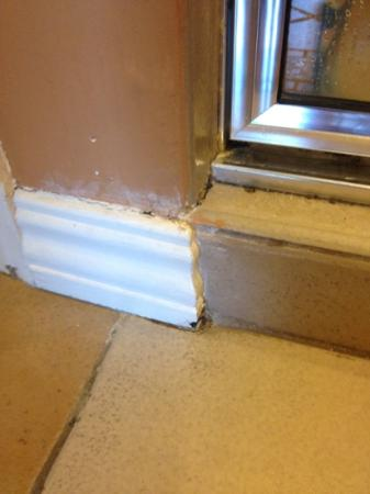Hyatt Residence Club Key West, Windward Pointe: more mold/mildew