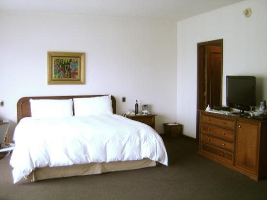 Hotel Libertador Lima: Our room