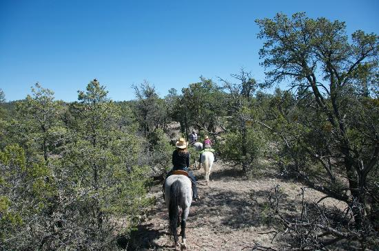 Geronimo Trail Guest Ranch: Family Ride