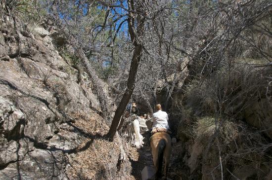 Geronimo Trail Guest Ranch: Shot'em Again Canyon