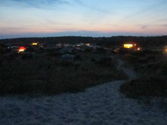 Ocracoke Campground : Campground view from dune