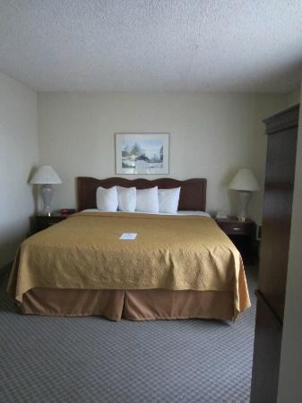 Quality Inn & Suites: Very comfortable king bed