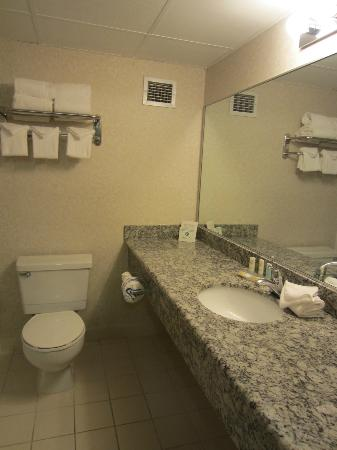 Quality Inn & Suites: immaculate bathroom 2