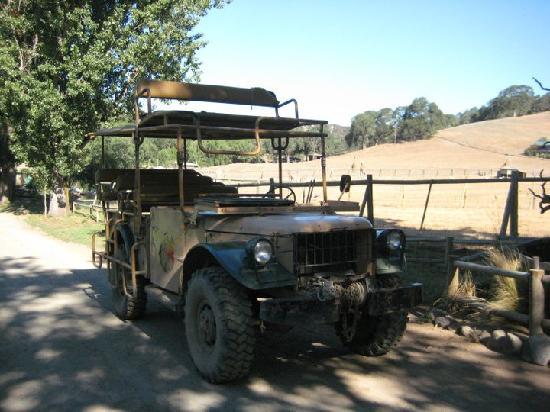 Animal habitat as seen on the jeep tour - Bilde av Safari