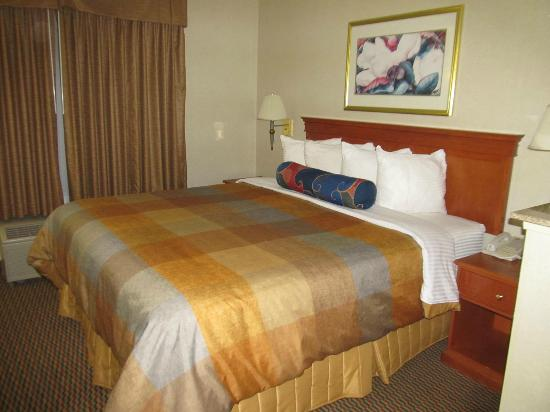 BEST WESTERN PLUS Airport Inn & Suites: Bedroom_ Suite-1 King Bed