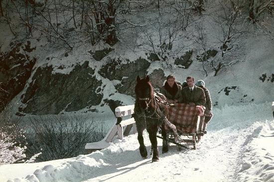 Veliki Slap : Plitvice Lakes by Dr.sc Srecko Bozicevic