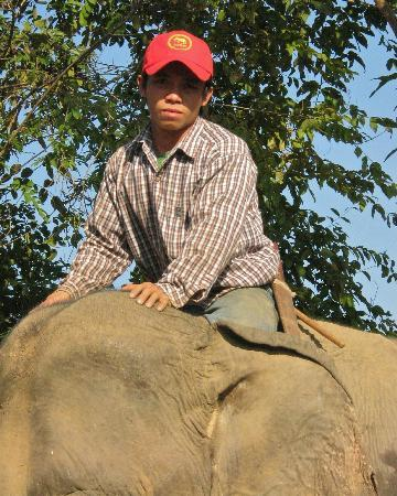 Elephant Conservation Center: Xang