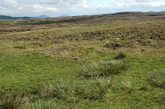 Sharvedda: Blick auf Patsy's home in der Ferne - Einsamkeit, wie wir sie gessucht haben