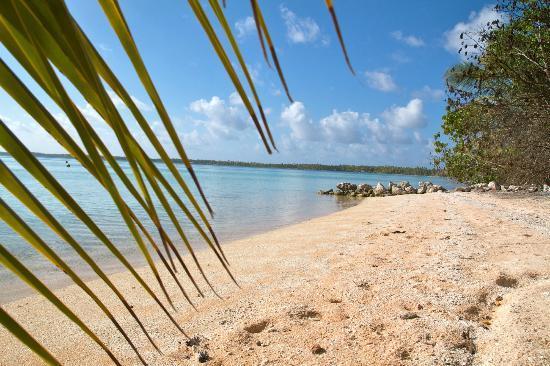 Tuamotu Archipelago, French Polynesia: plage de chez raiata et willy