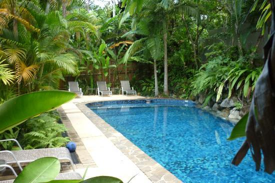 Coral Sea Villas Port Douglas: Pool at Coral Sea Villas