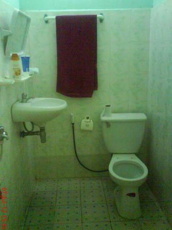 Advisor Angkor Villa: Toilet