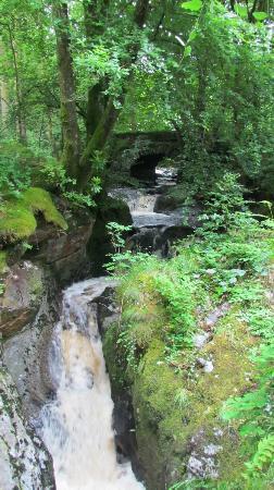 Hafod Uchtryd: Hafod - Gorge Trail