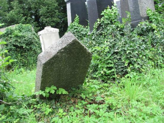 Jewish Cemetery Klatovy: a detail