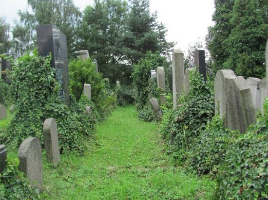 Jewish Cemetery Klatovy: view