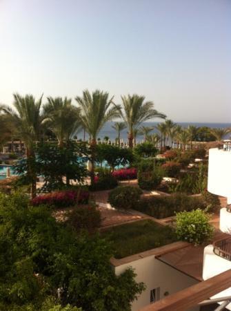 Jaz Fanara Resort & Residence: vue de la terrasse, la piscine et au fond, la Mer Rouge