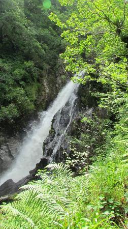Devil's Bridge Falls: Waterfall