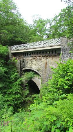 Devil's Bridge Falls: Devils Bridge