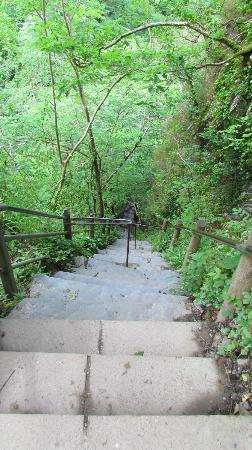 Devil's Bridge Falls: Jacobs Ladder