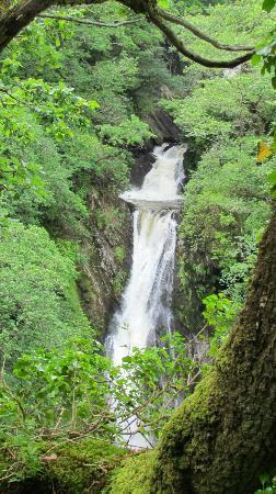 Devil's Bridge Falls: Waterfalls