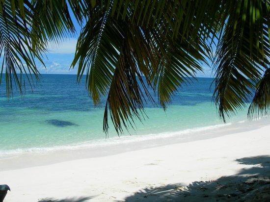 Desroches Island: spiaggia davanti a noi