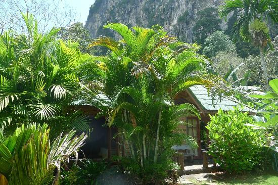 Vipa Tropical Resort: Flore luxuriante au pied des falaises