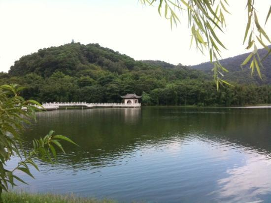 Tongsha Ecological Park