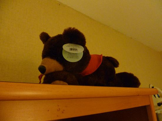 Stoney Creek Hotel & Conference Center - La Crosse: Stuffed bear on the bed when you enter the room
