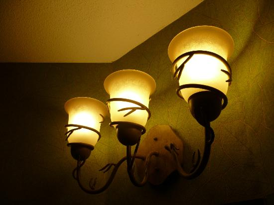 Stoney Creek Hotel & Conference Center - La Crosse: Bathroom lights