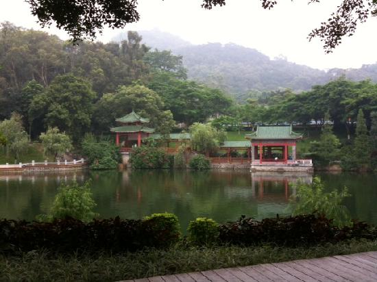 Qifeng Park: Lake with pagodas (careful of the mosquitoes!!)