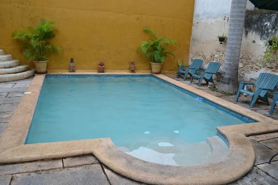Luz En Yucatan: The pool