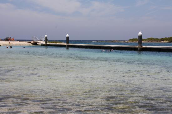 Santa Barbara Beach & Golf Resort, Curacao : Le ponton