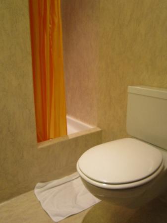 Hotel Waldhorn: WC & Shower