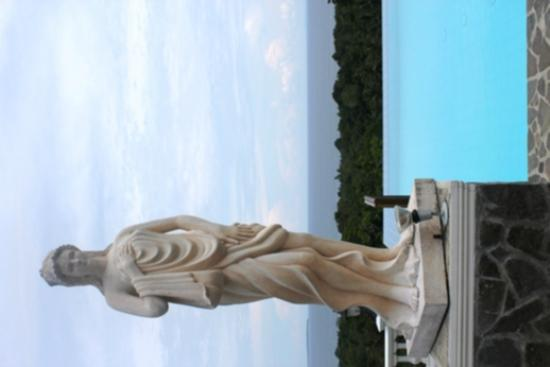 เดอะ พีค็อก การ์เดน: Statue outside the infinity pool at the Peackock Garden