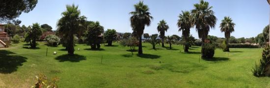 Hotel le Ruesco : le jardin et au fond la mer et avant la piscine!