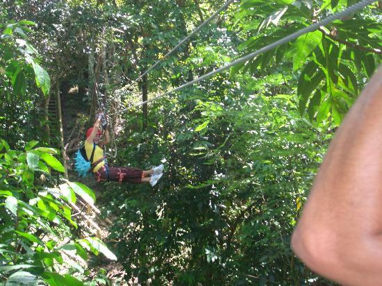 Floriham TreeTop Adventures: zipline