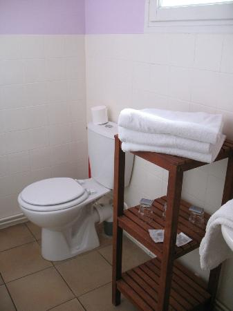 Hotel Saint Roch : bathrooom