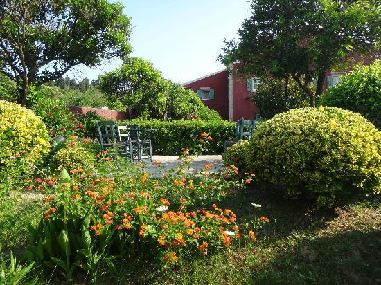Villa De Loulia: The garden
