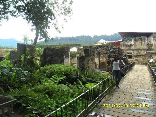 Hotel Museo Spa Casa Santo Domingo: jardim