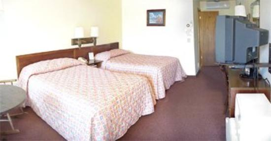 Black Bear Motel: Room