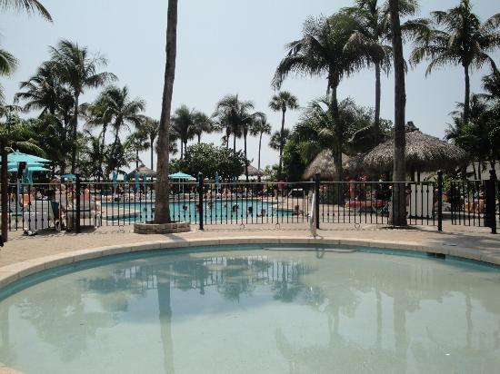 Hotel Riu Plaza Miami Beach : La piscine