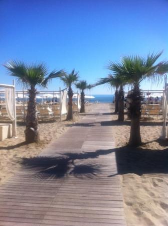 Spiaggia Le Palme 88-89: è semplicemente PERFETTA!
