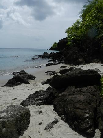 Anse Chastanet Beach and Reef: Black sand beach