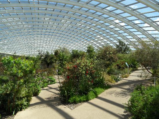 Chip Fat Train Picture Of National Botanic Garden Of Wales Llanarthney Tripadvisor