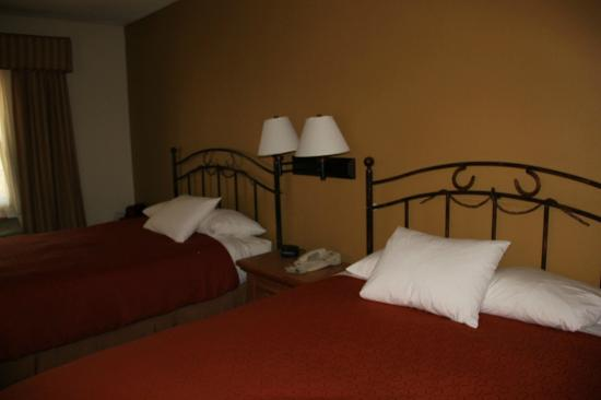 Country Inn & Suites By Carlson, Scottsdale: Wonderful decor/beds