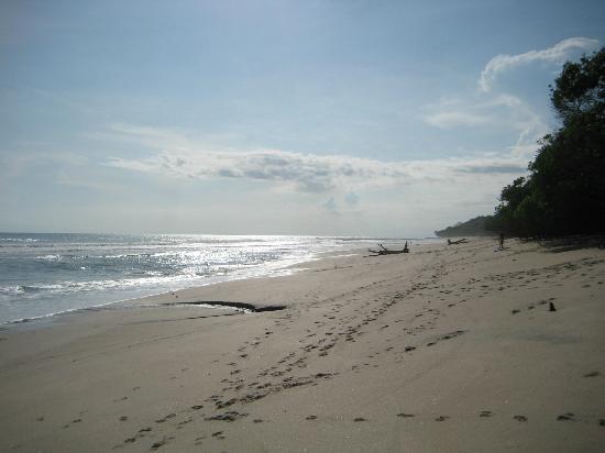 Mariposa Vacation Homes: Beach