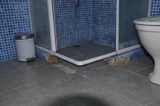 Stray Cat Hostel : Broken shower cubicle